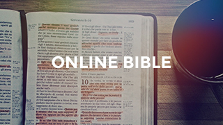 Online Bible Search